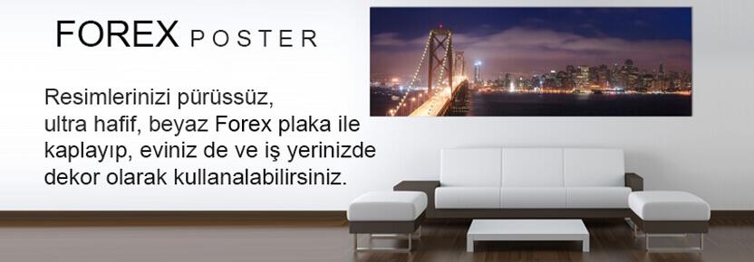 Forex posterxxl