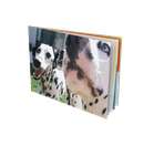 Softcover Compact 15x10