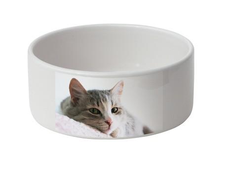 Voederbak voor kat