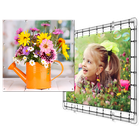 Tuinposter 50x50