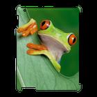 iPad 3, 4 - 3D Case